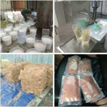 BUMDes Desa Sungai Ara, Inhil Olah Turunan Kelapa Jadi Cocofiber, Briket dan Minyak Goreng