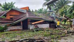 Tertimpa Pohon Besar, Satu Rumah Warga di Sergai Hancur Berantakan
