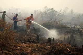 Sudah 21 Tersangka Karhutla di Riau Ditahan Polisi
