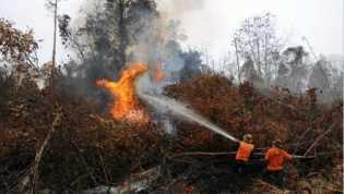 Hotspot Terbanyak Hari Ini di Riau Se-Sumatra