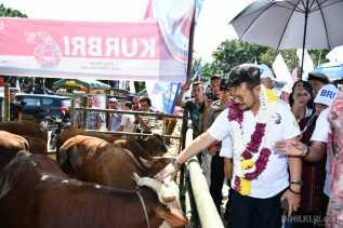 Menteri Pertanian RI Minta Kepala Daerah Jangan Ragu Bantu Petani dan Peternak