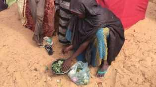 Sedih, Jutaan Warga Somalia Hanya Berbuka Puasa dengan Daun