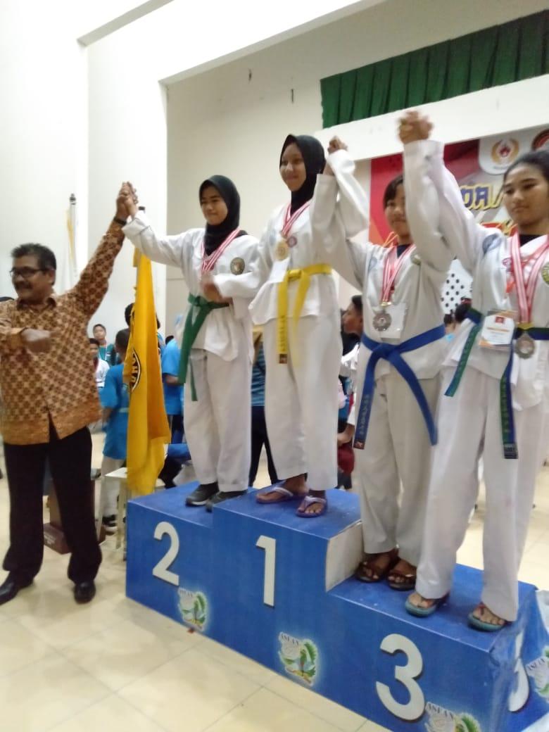 Masuk 4 Besar, Pengkab TI Inhil Sabet 5 Medali Emas di Agribusiness Taekwondo Cup 2018