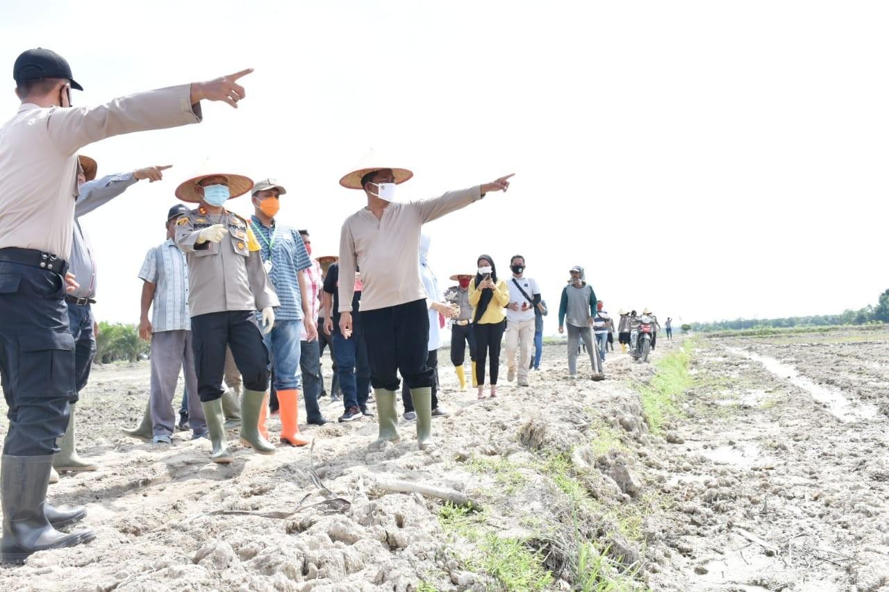 Buka Lahan Baru 20 Hektar, Wabup bersama Kapolres Sergai Tabur Benih Padi
