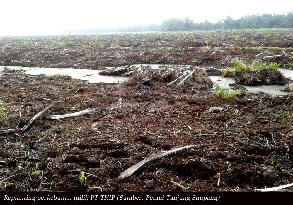 13 Poin Tuntutan Masyarakat Desa Tanjung Simpang, Mulai dari Ganti Rugi Hingga Menijau Ulang HGU Milik PT THIP