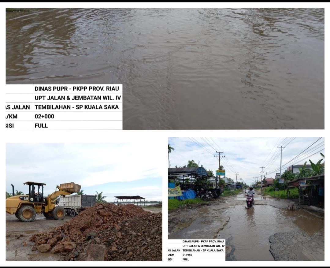 Material  Perawatan Jalan Sungai Beringin Sudah Datang, Dani M Nursalam: Tolong Disegerakan
