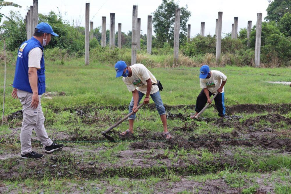 BNPB Ajak Warga Riau Olah Lahan Gambut Tanpa Bakar Untuk Cegah Karhutla