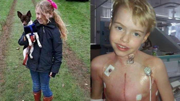 Bocah Ini Donorkan Organ Tubuhnya: Ginjal, Jantung, dan Hati. Ternyata Alasannya...
