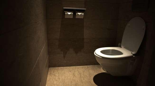 Toilet Pintar Ini Bisa Deteksi Penyakit Anda
