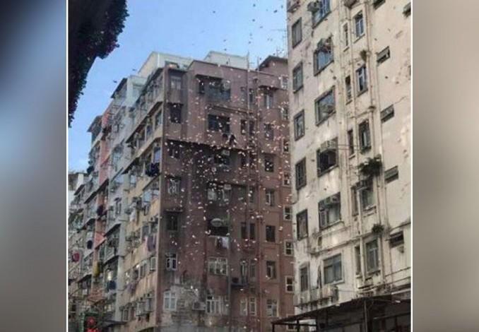 Hujan Duit Hebohkan Warga Hong Kong