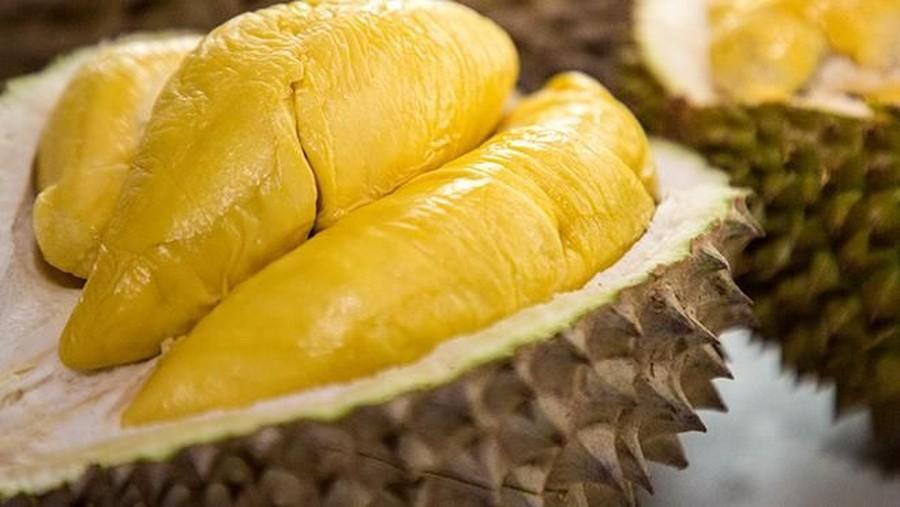 Ratusan Orang Dievakuasi Hanya karena Durian, Kok Bisa?