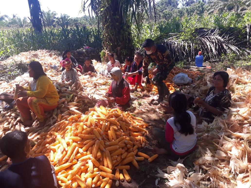 Sambil Komsos, Warga Belajar Berbagai Usaha dari Warga Desa Mabar