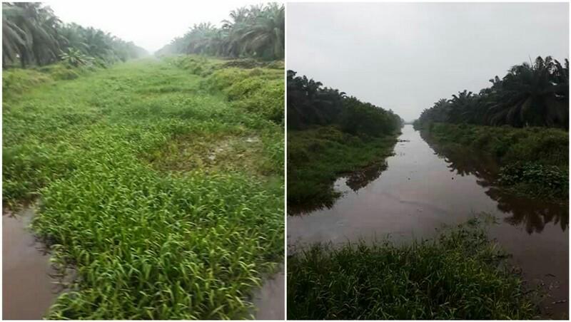 Geger, Kanal Ajaib di Inhil Bisa Bersih Sendiri, Begini Kejadiannya...