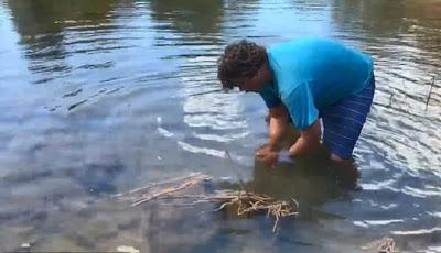 Pria Ini Nekat Tangkap Buaya Pakai Tangan Kosong di Sungai