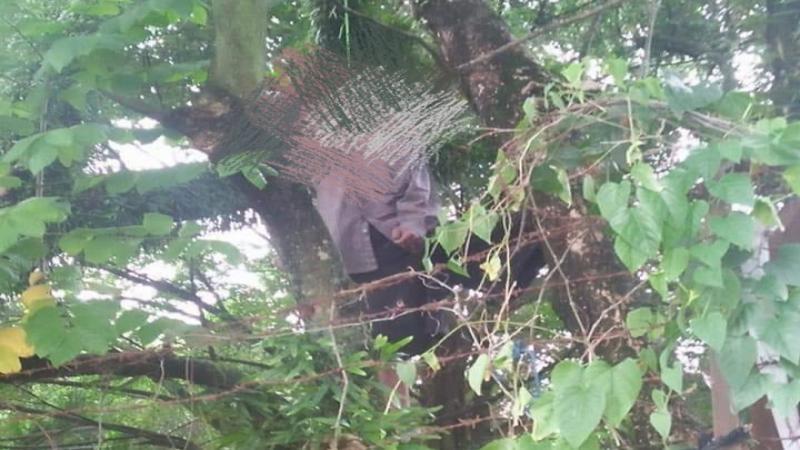 Dua Kali Gagal, Buruh Angkut Pasar Ditemukan Tewas Tergantung di Pohon