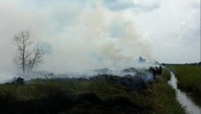 Sebanyak 55 Hotspot Terpantau di Rokan Hilir