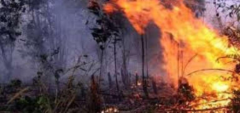 10 Hektar Lahan Warga Bengkalis Kembali Terbakar