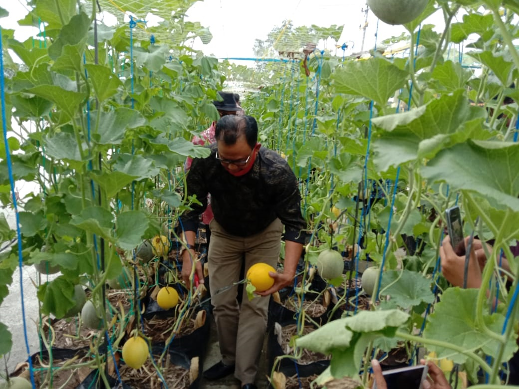 Rokan Hilir Canangkan Kota Agrowisata Buah