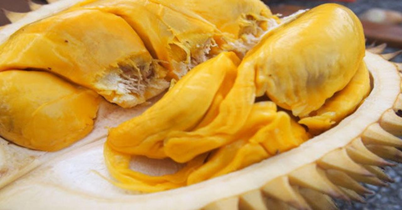 Makan Durian Bikin Kolestrol Naik? Ini Faktanya