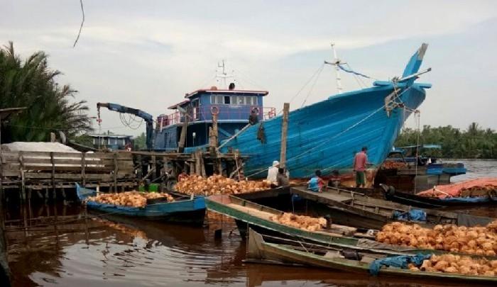 Thailand Banned Kelapa Indonesia, Ini Reaksi Perpekindo