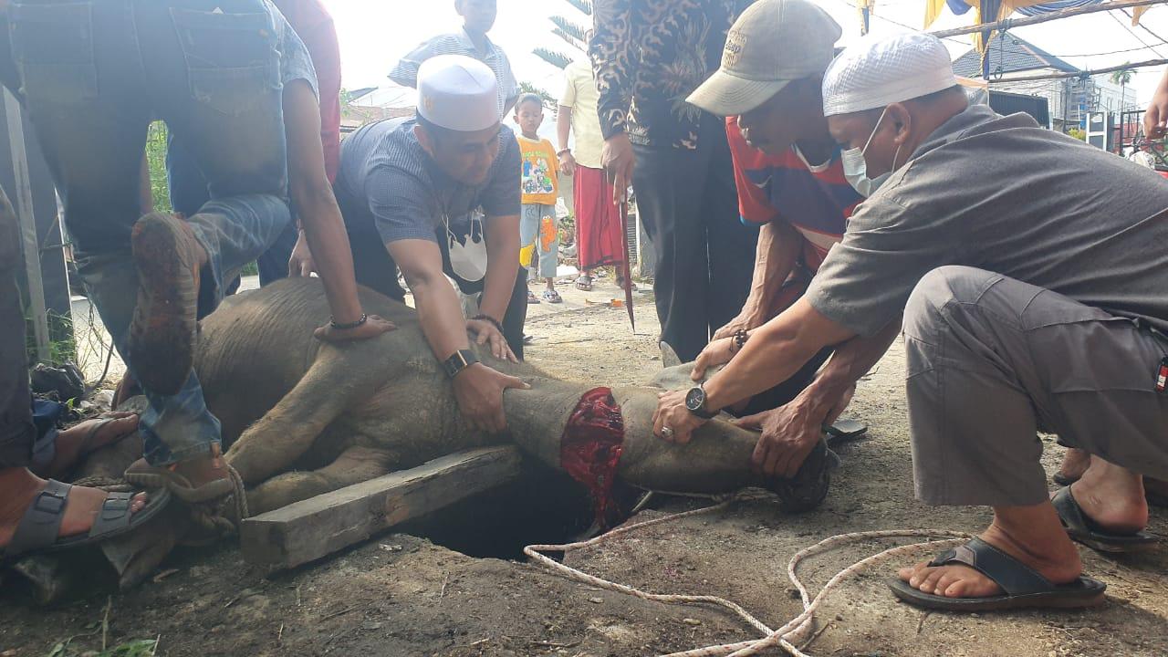 Sambu Group, Sekwan dan YVB Sukseskan Kegiatan Kurban PWI Inhil