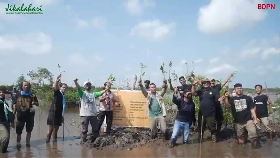 Tanam Mangrove Untuk Mitigasi Perubahan Iklim dan Pemulihan Ekonomi