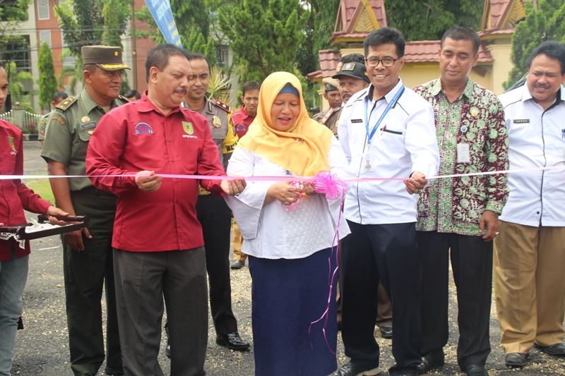 Sekda Inhil Buka Kegiatan Pemilihan Duta GenRe dan Ajang Kreatifitas Remaja Provinsi Riau