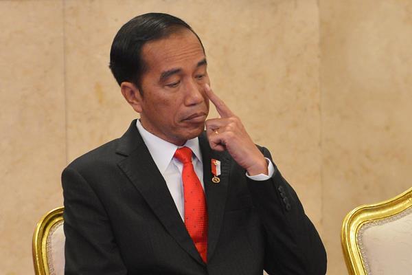 Presiden Jokowi Dijadwalkan ke Riau