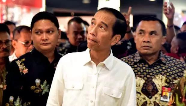 Jokowi ke Riau Hadiri Hari Anak dan Tinjau Tol Trans Sumatera